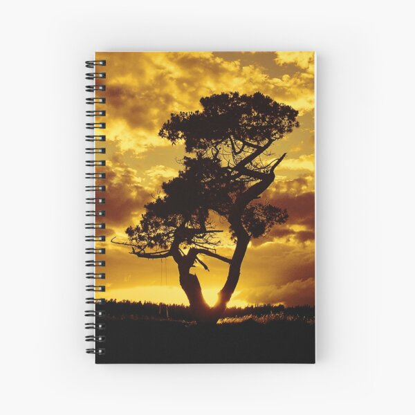Tree Dance 2 Spiral Notebook