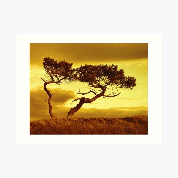 Tree Dance Art Print