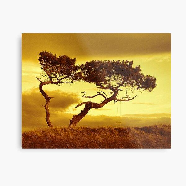 Tree Dance Metal Print