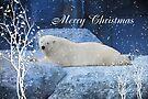 Polar Bear Christmas by Elaine Manley