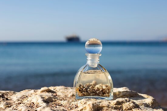 A bottle with seashells on the beach selective focus on the foreground  by PhotoStock-Isra