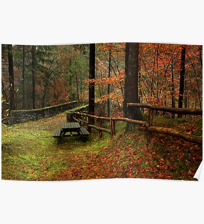 Picnic in the woods Poster