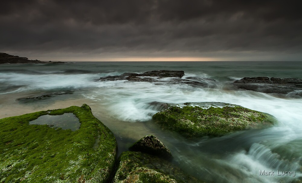 What Fate Holds by Mark  Lucey