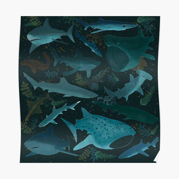 Sharks Attack Poster