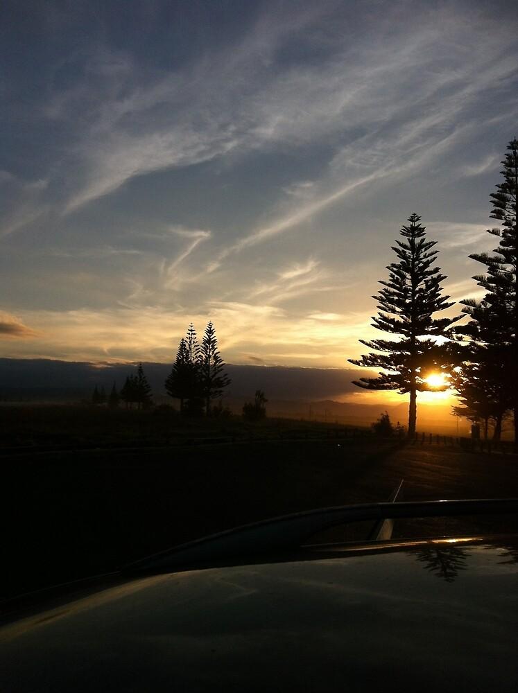 sun set pines by issybunbun