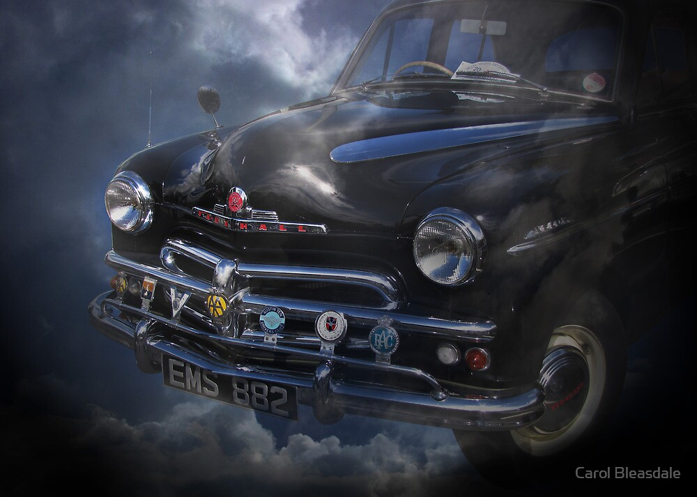 Blue Thunder by Carol Bleasdale