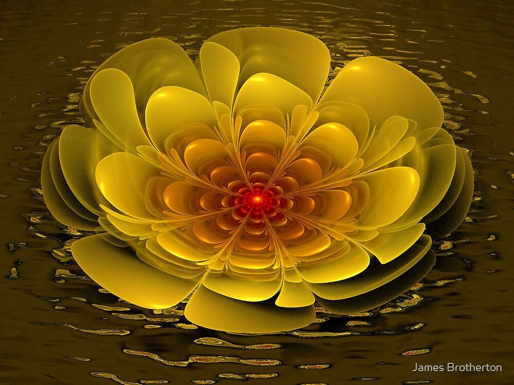 Floating Bloom by James Brotherton