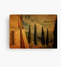 Cypress Family-Pienza, Tuscany Canvas Print