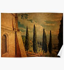 Cypress Family-Pienza, Tuscany Poster