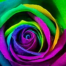 Multi Coloured by Keith G. Hawley