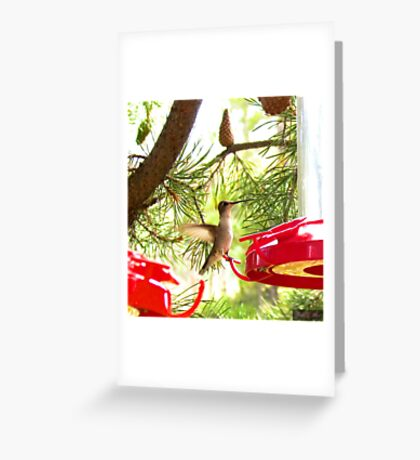 Lil peace of Heaven Greeting Card