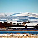 Wyre Winter by John Hare