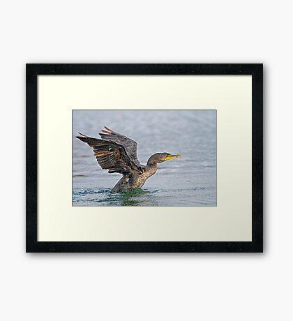 Take off, eh! Framed Print