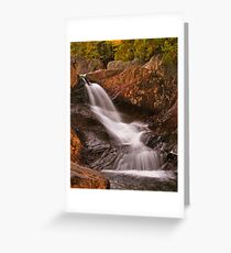 Cleanse  Greeting Card