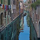 Early morning run, Venice by Freda Surgenor