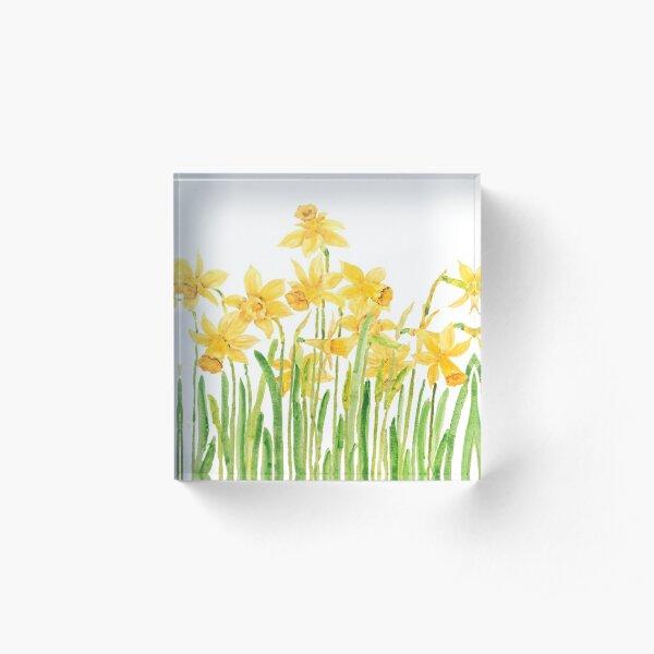 aquarelle de champ jonquilles jaunes Bloc acrylique
