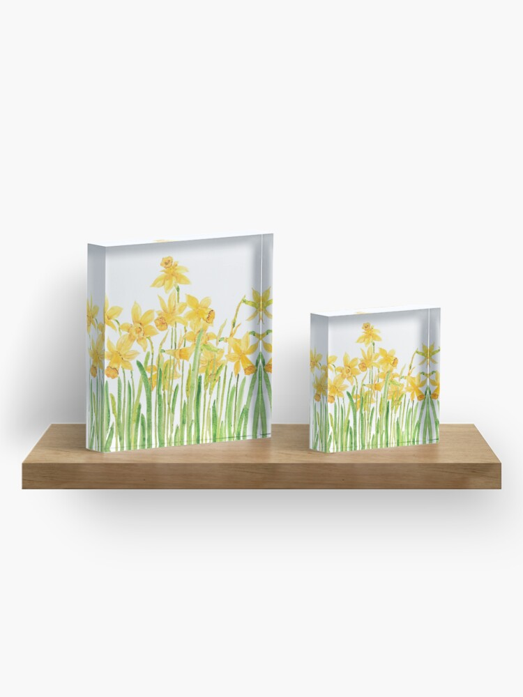 Alternate view of yellow daffodils field watercolor Acrylic Block