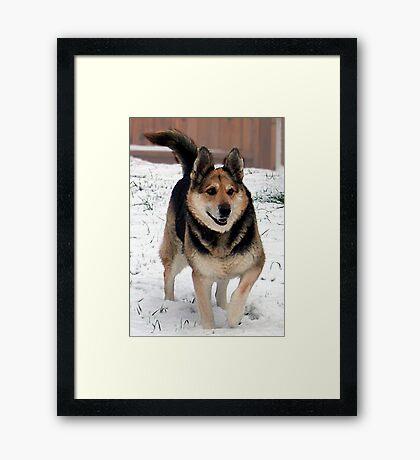 Grandpa's Best Friend Framed Print