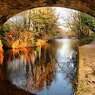 Under the Aquaduct. by Lilian Marshall