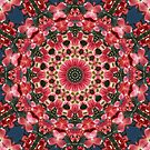 Dogwood Tree Kaleidoscope. by Lee d'Entremont