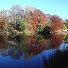 Autumnal bank by mysticcatnip