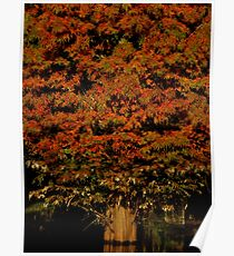Autumnal Splendor ~ Part Two Poster