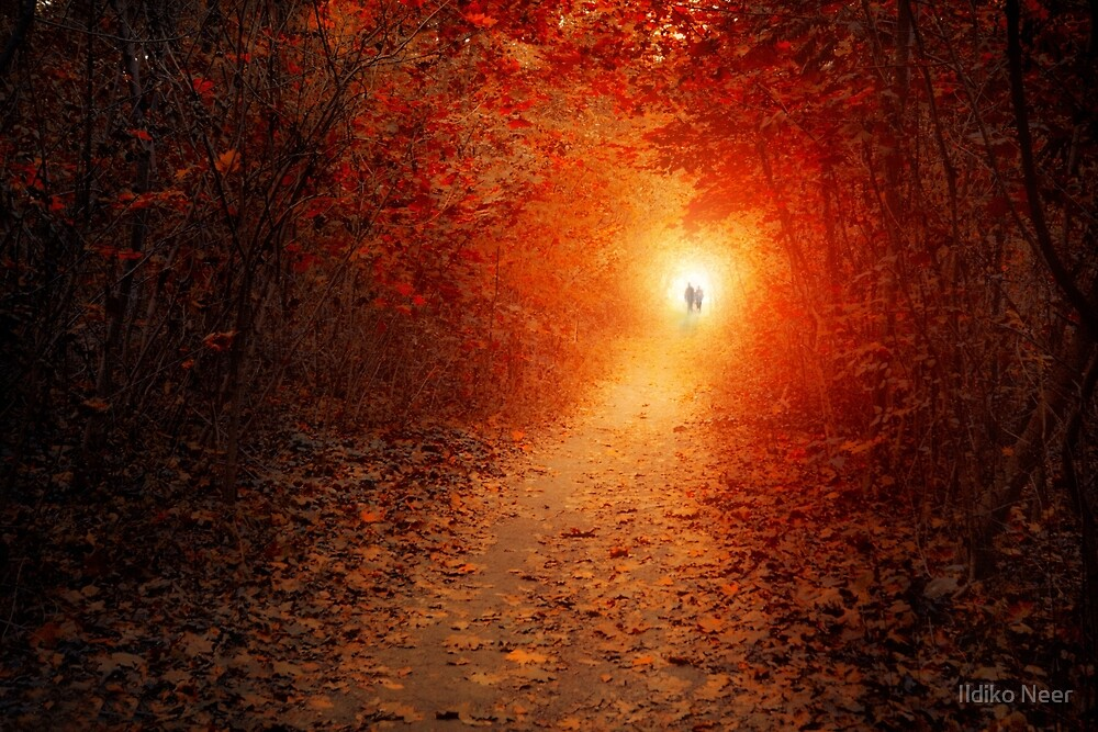 Two of Us by Ildiko Neer
