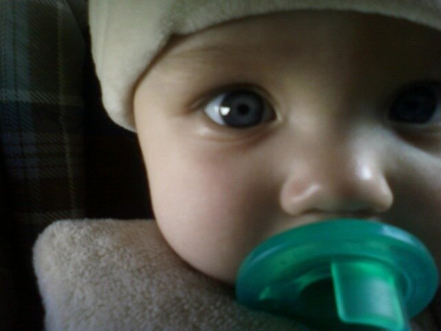 Baby Boy by chaosNmayhem