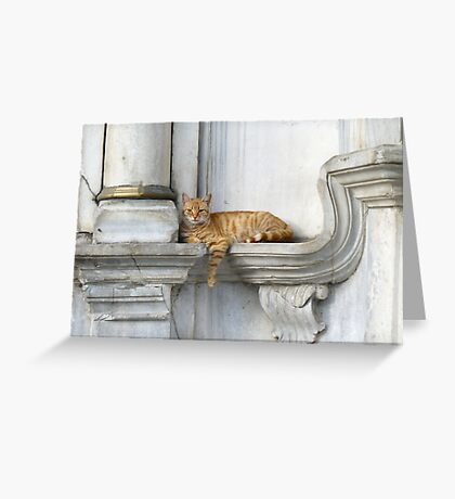 Relaxing on marble (Eyüp) Greeting Card