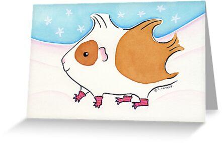 Guinea-pig With Stripy Socks in the Snow by Zoe Lathey