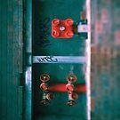 Fire Hydrant... by Mary Grekos