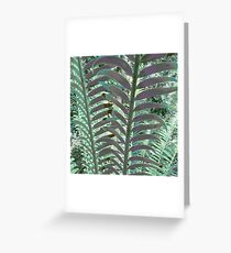 Cycads Greeting Card
