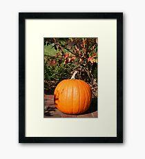 Season of Harvest 3 Framed Print