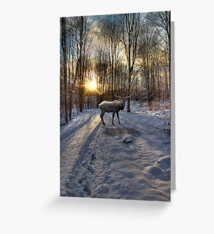 Winter Elk Greeting Card