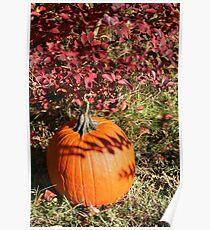 Season of Harvest 1 Poster
