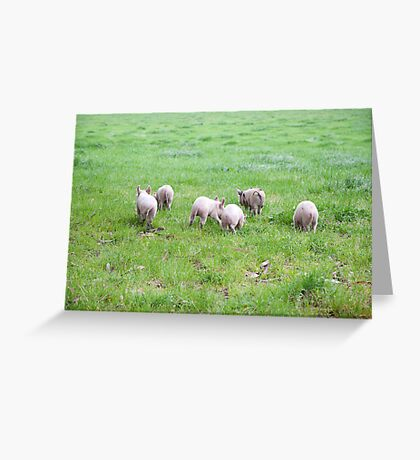 and they ran all the way home... Greeting Card