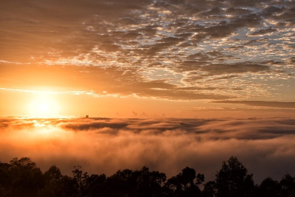 Foggy Brisbane Sunrise by Kristin Repsher