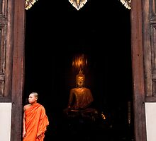 Buddha and the Monk - Thailand by Daniel Nahabedian