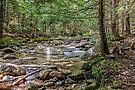 Swift river by PhotosByHealy