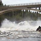 Fishing Adventures. Kalixelva . Laponia.  Sweden. 2015. by Goszcz Andrzej by © Andrzej Goszcz,M.D. Ph.D