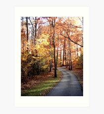 Dahlonega Fall Foliage Art Print