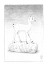 Ivory Gazelle by Aakheperure