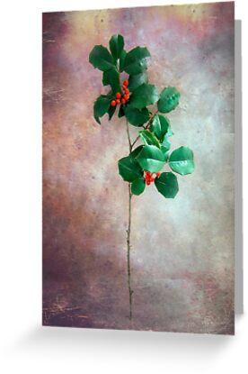 Holly Christmas Card by LouiseK