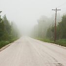 Country Road Mist, Bruce County by Skye Hohmann