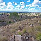 View of Charters Towers by Kim Austin