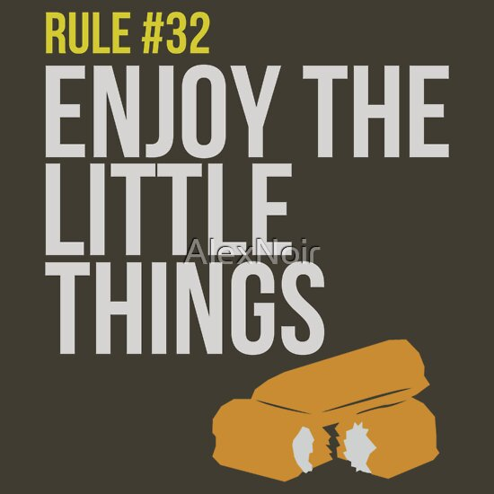 TShirtGifter presents: Zombie Survival Guide - Rule #32 - Enjoy the Little Things