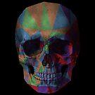 Jester's Skull by sjem ©