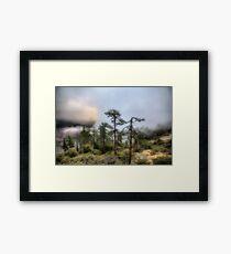 'Jurassic' Park Framed Print
