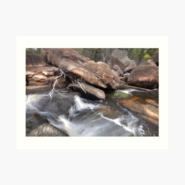 The Ramblings  of  Bald Rock Creek  Art Print