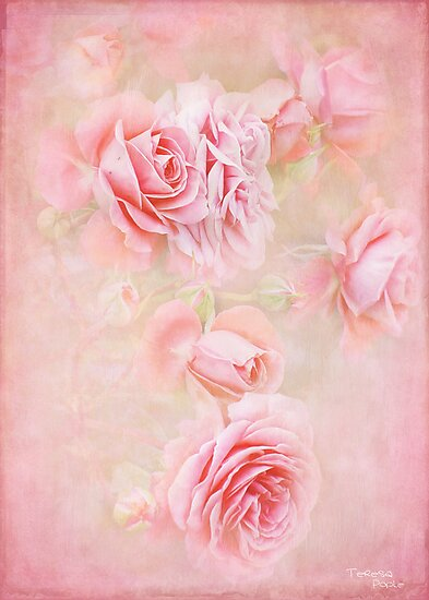 old english roses by Teresa Pople